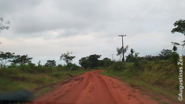 Tipinis Paragvajaus kelias toliau nuo pagrindinių