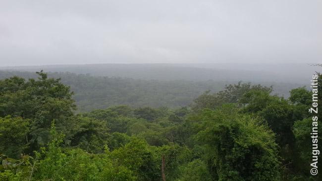 Ybykujaus nacionalinis parkas nuo apžvalgos aikštelės
