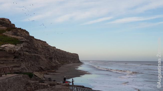 Uolos ir didžiausia pasaulyje papūgų kolonija aplink Balneario El Condor
