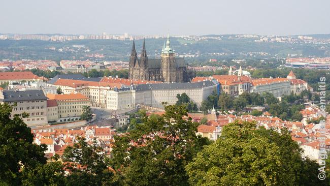 Prahos Pilies kalnas su garsiąją Šv. Vito katedra