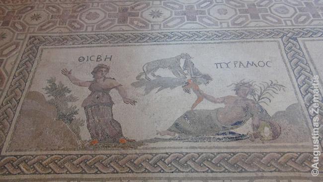Mozaikos iš romėnų vilų Pafose, Kipre
