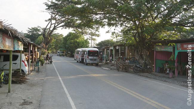 Autobusai sustojo pakelės turguje Rytų Timore. Tiesa, jis brangus