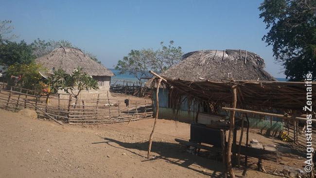 Namai Rytų Timoro pakrantėje