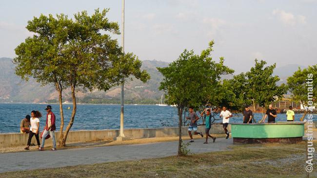 Dilio pakrantės promenada