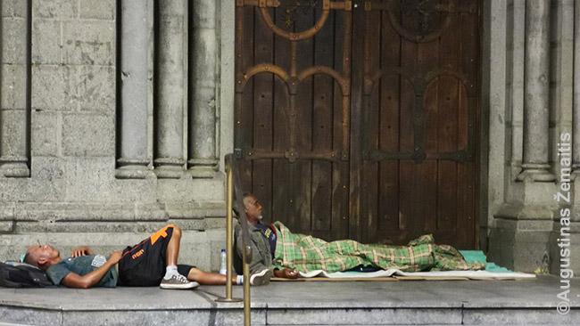 San Paulo benamiai, kadangi lyja, persikėlė ten, kur pastatų atsikišimai kiek užstoja lietų. Gamtos sąlygos verčia juos nuolat 'migruoti'