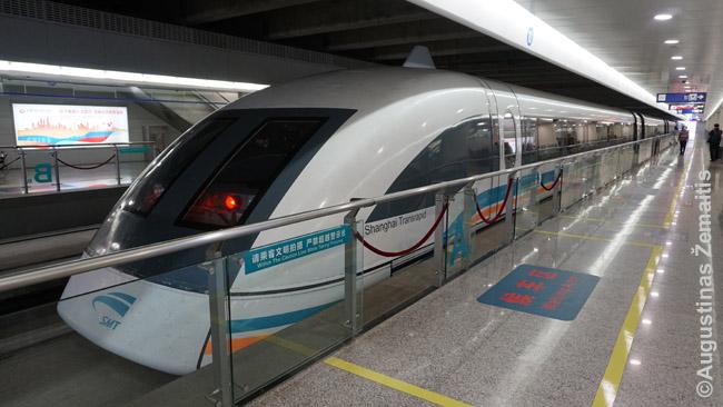 """Šanchajaus maglevas oro uosto stotyje pasiruošęs išlėkti lauk. Tiesa, 431 km/h greičiu važiuoja tik dalis reisų (žiūrėkite grafiką) - likę lekia """"tik"""" 300 km/h. Taip pat verta žinoti, kad tądien skrendantiems kelionė maglevu - kiek pigesnė."""