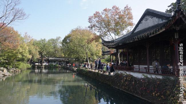 Kukliojo administratoriaus sodas Sudžou. Kinų soduose ne mažiau už augalus svarbi architektūra: daugybė paviljonų, kuriuose sodais džiaugdavosi jų šeimininkai.
