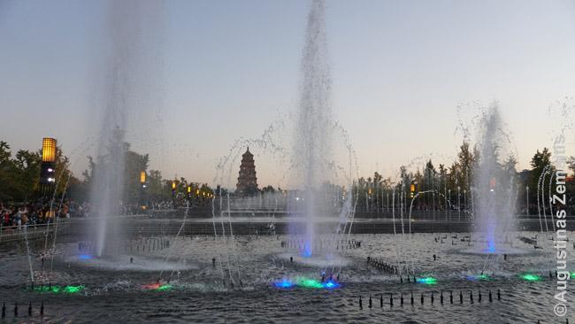 Priešais Didžiąją laukinės žąsies pagodą - muzikinis fontanas (tiesa, gana paprastas)