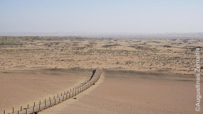 Dykuma, per kurią driekdavosi Šilko kelias