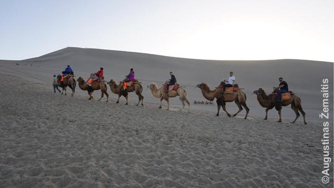Turistai kupranugariais joja per dykumą Šilko kelyje taip, kaip kadaise prekybiniai karavanai