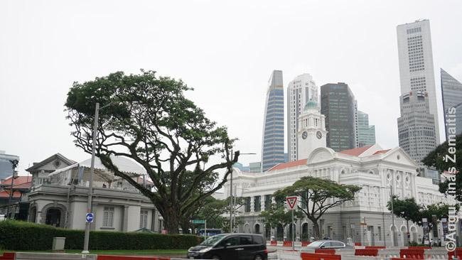 Pagrindinis Singapūro senamiestis (centras) su dangoraižiais fone