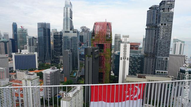 Singapūro dangoraižiai. Vėliavos iškeltos nepriklausomybės dienos proga, nors iki tos dienos dar buvo mėnuo