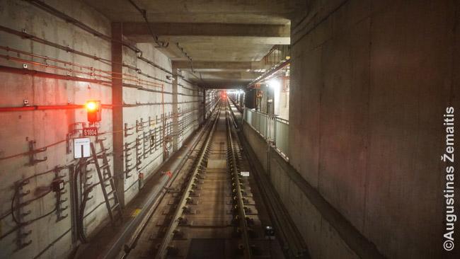 Tokį vaizdą gali stebėti važiuodamas Singapūro automatinėmis metro linijomis