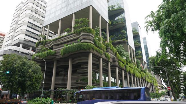 Dangoraižis-sodas Singapūre