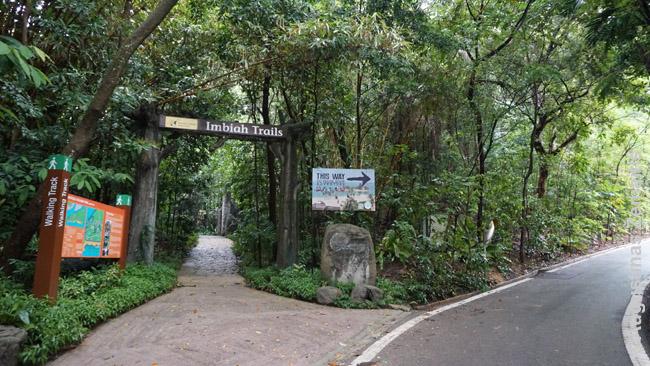 Sentosoje ir laukinės džiunglės - tiesa, paėjus kelis šimtus metrų į šoną, jos baigiasi, bet įspūdis kuriamas tobulai: medžiai, voverytės