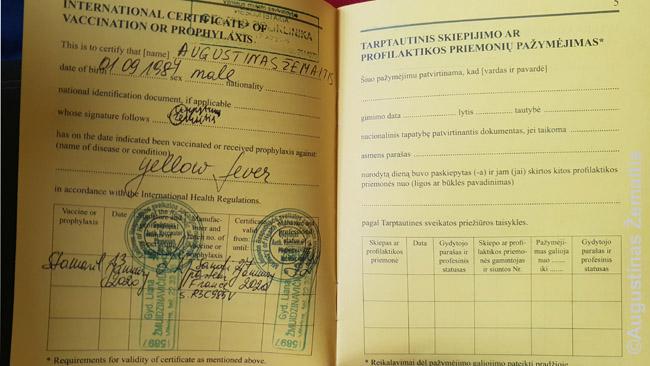 Tarptautinio skiepų paso puslapis apie geltonojo drugio skiepus