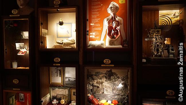 Nekaltybės muziejaus ekspozicija, kur kiekvienas 'langelis' skirtas knygos skyriui