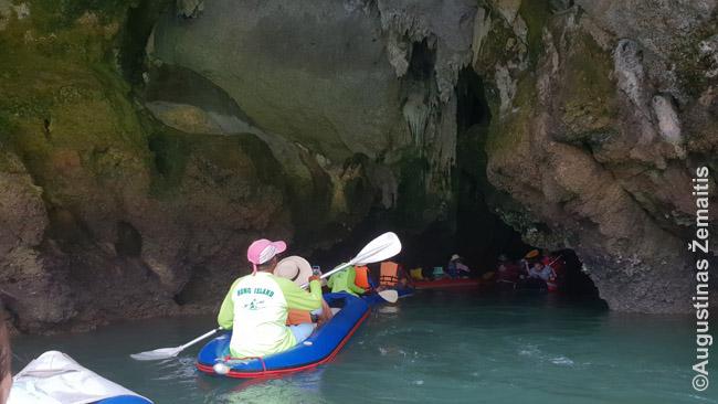 Plaukimas į Hongą