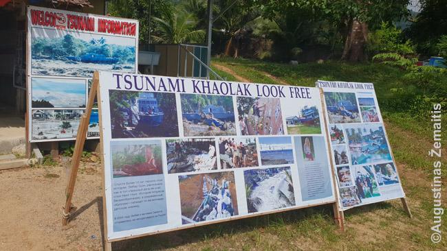 """""""Free to Look"""" cunamio pasekmių nuotraukų galerija (bet paskui prašo aukų)"""