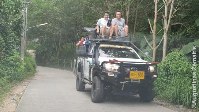 Ar daug pasaulio vietų galėtum važiuoti štai taip? Turistinė ekskursija Ko Samui saloje.