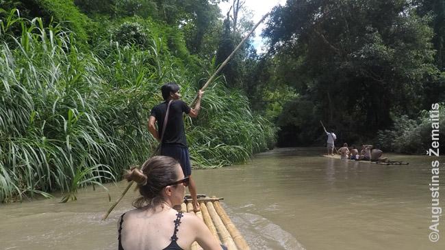 Plaukimas bambukiniais plaustais - viena šiaurės Tailando pramogų