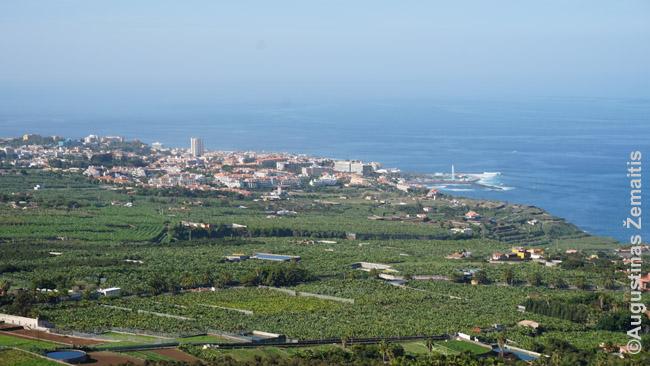 Puerto De La Cruz žvelgiant nuo gretimo kalno