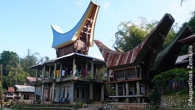 Net ir šiaip jau šiuolaikiški namai būna turi bent jau tradicinį stogą