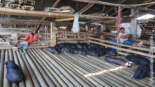 Rantepao turgaus kiaulienos skyriuje