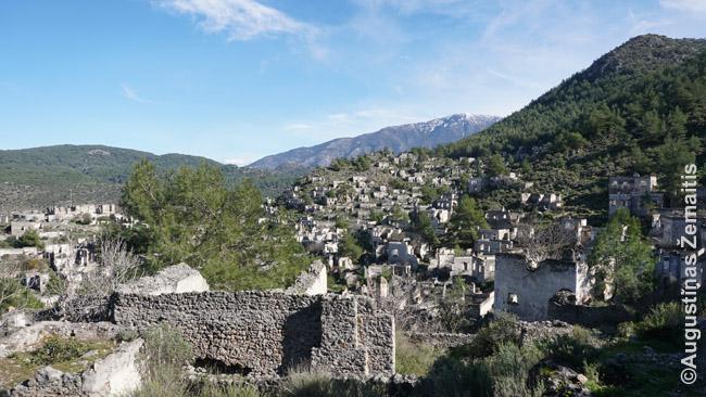 Kajakojaus apleistas graikų miestelis. Kažkada čia gyveno 6500 žmonių. Viskas liko kaip buvo, tik nyko: siauros akmenuotos žole užaugusios gatvelės, kur vaikščiota pėsčiomis ir asilais, o automobilių dar iš esmės nebuvo