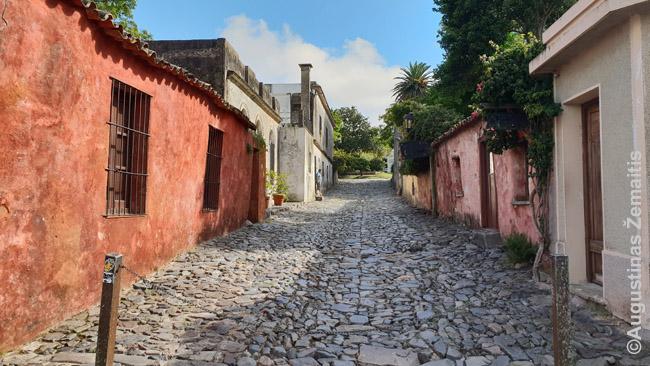 Kolonijos del Sakramento senamiesčio gatvelė