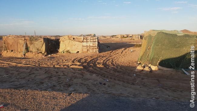 Lasargos kaimas-lūšnynas Vakarų Sacharoje, į kurį neužsuka beveik jokie turistai