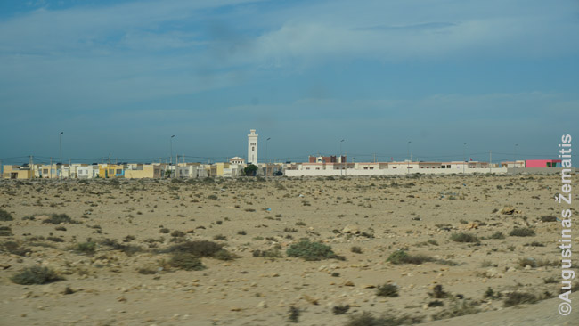 Vakarų Sacharos miestelis tik iš tolo gražus. Jame nėra nė vienos parduotuvės. Dykumoje aplink pritiesta naujų gatvių - matosi, planuojamas miestelio augimas