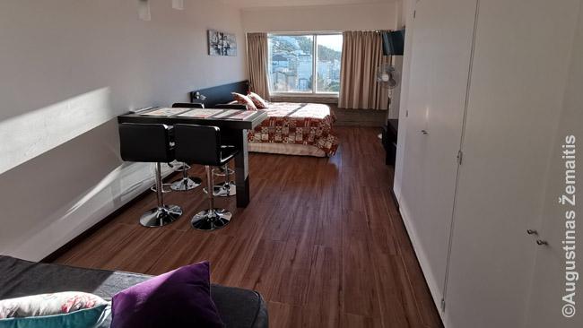 Tokio dydžio galėtų būti ir viešbučio numeris, bet butas išplanuotas patogiau - daugiau baldų (normalus stalas darbui/valgiui, sofa). Už nugaros - virtuvėlė.