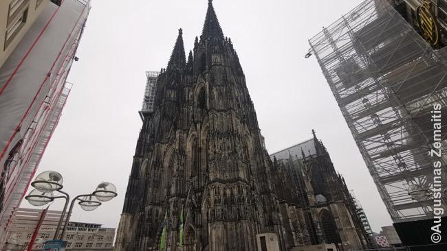 Kelno katedra
