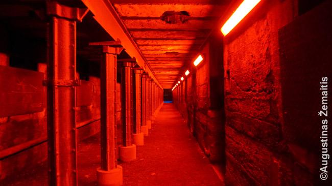 Tunelis Duisburgo Landšaftparke naktį