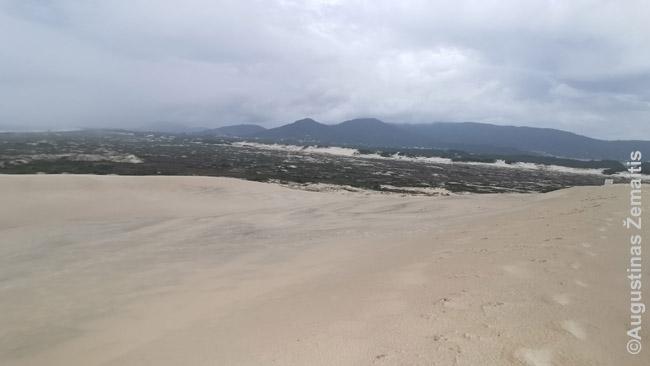 Žoakinos paplūdimio kopos
