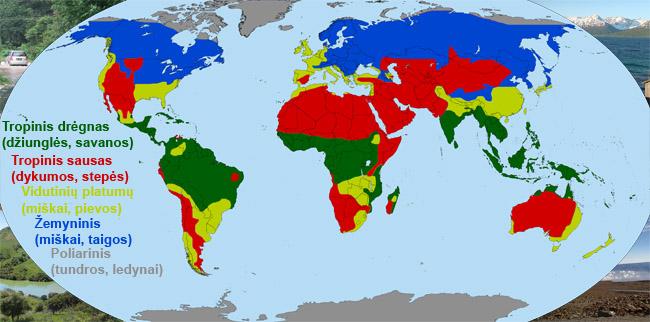 Pasaulis suskirstytas į penkis pagrindinius klimatinius regionus